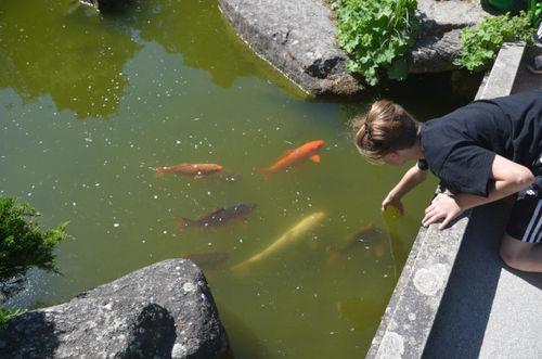 02 Fische